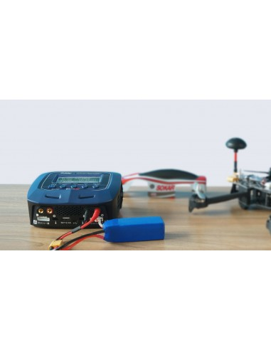 Cargador D100 V2 SKY RC